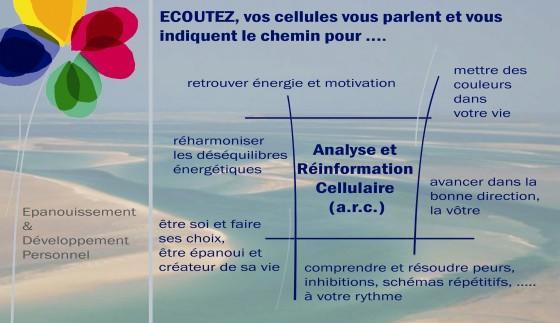 memoire_cellulaire